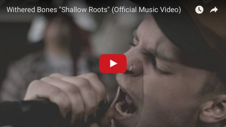 ShallowRoots_youtuberpreview